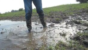 Splashing in the mud puddle