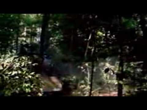 Michael Jackson - Earth Song - World Environment Day