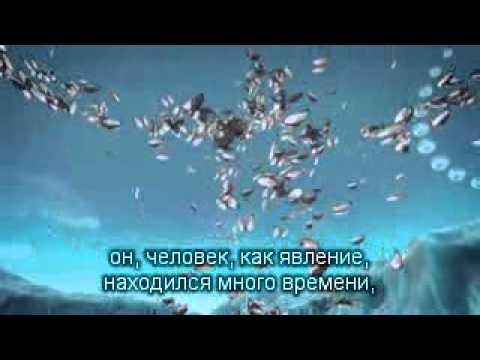 2012 05 03 Дети света о себе, о людях и Земле.