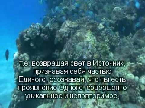 2012 11 16 Возвращать свет в Источник