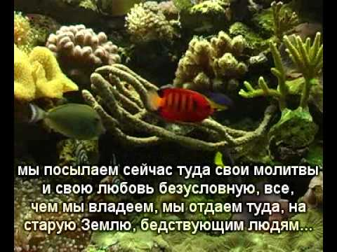 2013.01.02 Новая Земля 7 Свет Земле