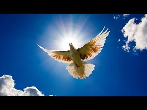 Святому Духу моему