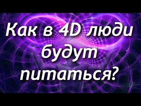 Как в 4D люди будут питаться?