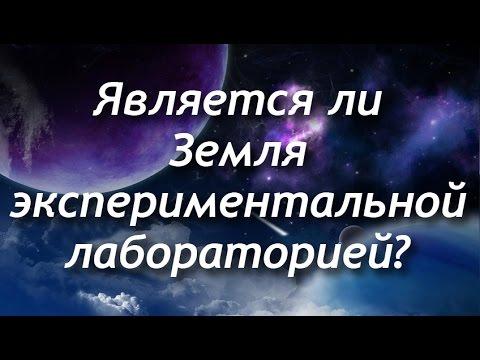 Является ли Земля экспериментальной лабораторией?
