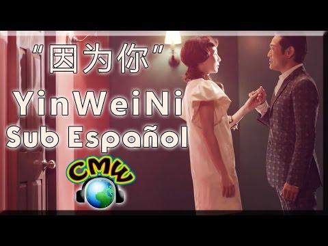 因为你 - Yin Wei Ni - Por ti | Freya Lim 林凡 & Alex To 杜德偉 | [Hanzi + Pin Yin + Sub Español]