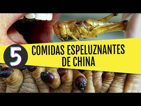 Top 5 comidas más espeluznantes de China
