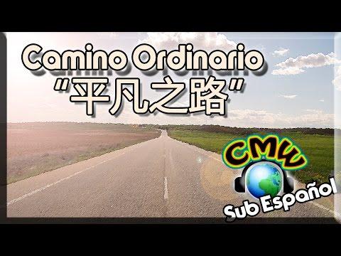 Camino Ordinario - Píng Fán Zhī Lù | Pu Shu 朴树 | [Hanzi + Pin Yin + Sub Español]