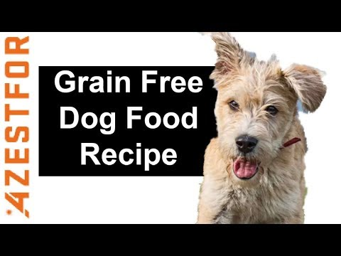Homemade Dog Food Recipe - Grain Free Ingredients Beef Asparagus Peas