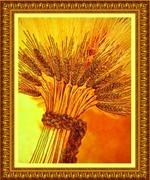 """Ретрит """"Мой Урожай"""" Как приумножить свое духовное и материальное благосостояние"""""""
