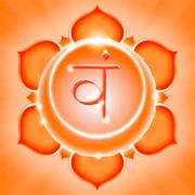семинар «Йога Божественного Выбора – 6.2»