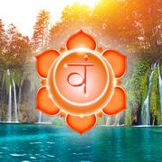 семинар «Йога Божественного Выбора – 6.1»