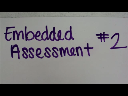 Algebra I Unit 2 Embedded Assessment 2 Group 2