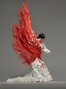 Reedición de iniciación al baile flamenco
