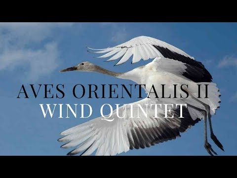 Aves Orientalis II (Vienna Symphonic Library SE)