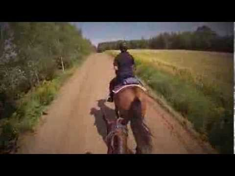 McDonald's Competitive Trail Ride, NB Canada