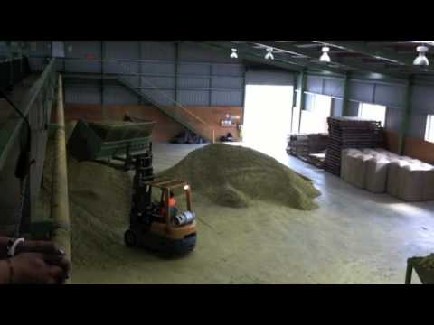 Nelson Sauvin Hops - Drying & Baling - Northwood Hops, Motueka