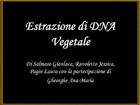 DNA's movie