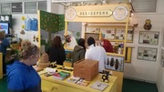 Talking about the Bees and Mock S. Fl. Fair Setup with Q & A !