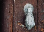 Ρόπτρο- The door-knocker.
