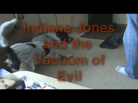 Indiana Jones and the Vacuum of Evil 2010