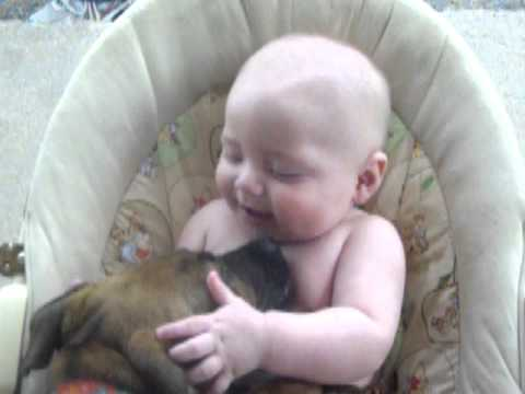 Cute Baby Playing With a Dog