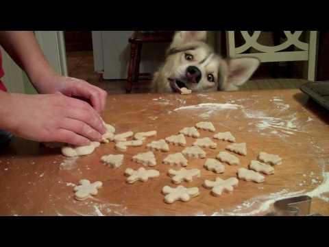 Christmas Dog Cookies Shiloh and Shelby Husky help Make Dog Cookies!