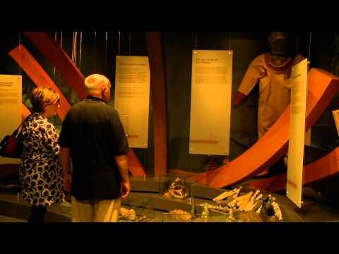 Flagstaff Hill Maritime Village and Sound & Laser Show