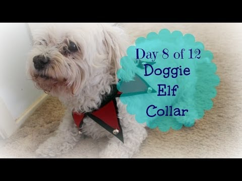 Dog's Felt Christmas Elf Collar - DIY