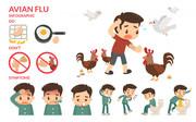 Know about Avian influenza or Bird Flu