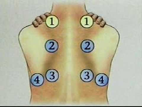Physical assessment of chest:posterior