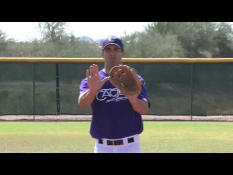 Cactus Athletic Camps Professional Infield & Outfield Training DVD