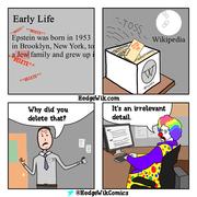 Jeffrey Epstein Wikipedia Clown World