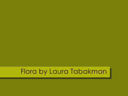 Flora - The Movie