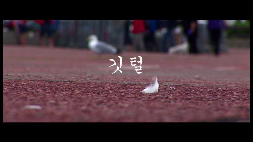 깃털 (Feather) The Movie