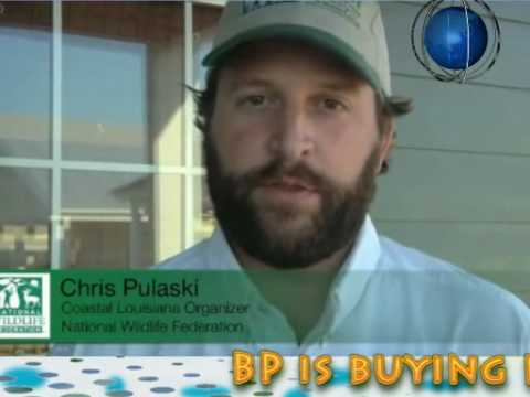BP Ecological Disaster