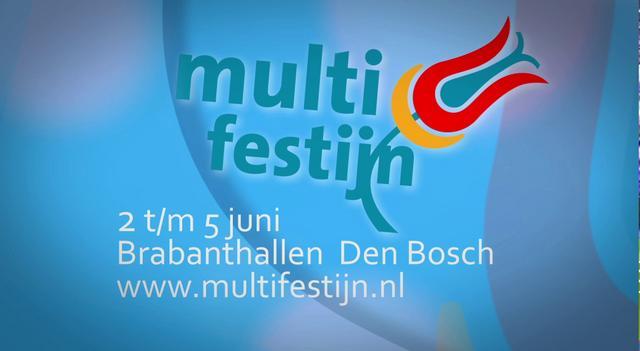 Multifestijn (NL Versie)