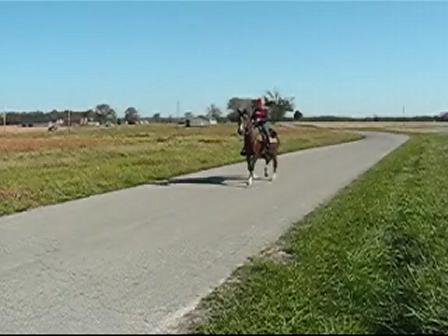 Peppy Rides