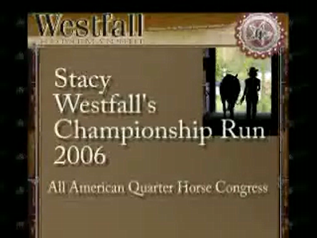 Freestyle Reining Competition/ Must see video!!!