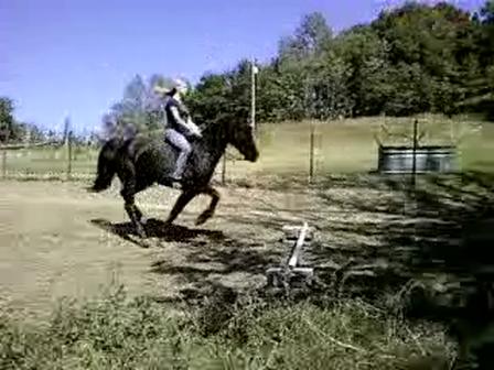 Jumping Cowboy