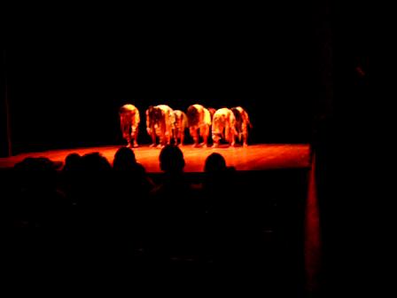 Cia de Dança Cultura em Movimento