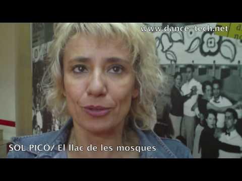 MOV_S Madrid 2010:  Entrevista con SOL PICÓ/ El llac de les mosques