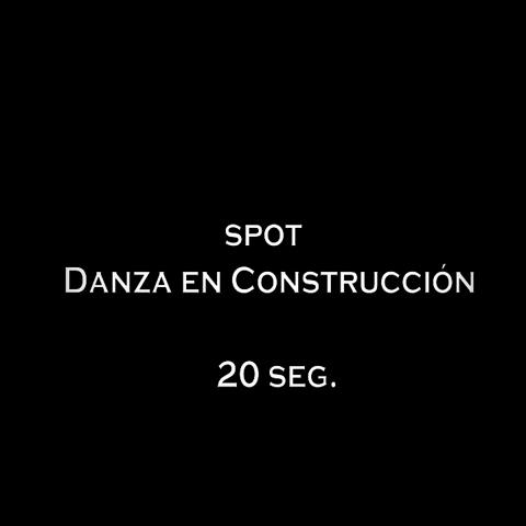 danza en construccion_toSVCD