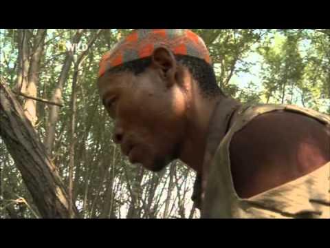 Kalahari Killers