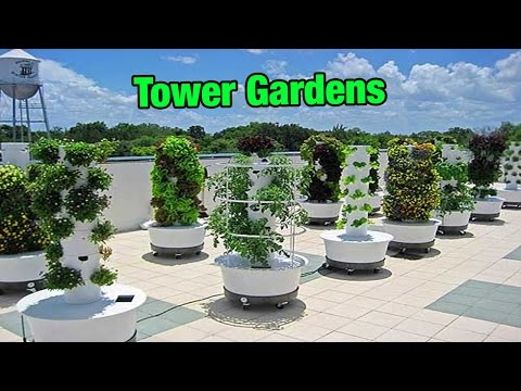 Vertical Gardens - FOOD GARDENING