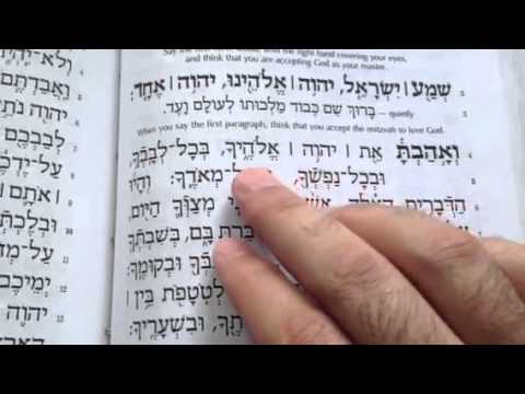 Practice reading the Shema.