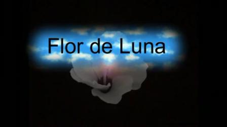 G_Zamfir-Flor_de_Luna(1)