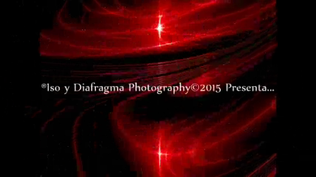 V Exposicion Toñi Barba - ISO Y Diafragma 2015
