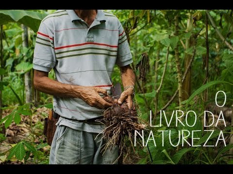 O Livro da Natureza (The Book of Nature)