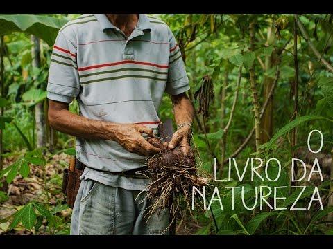 O Livro da Natureza (The Book of Nature)