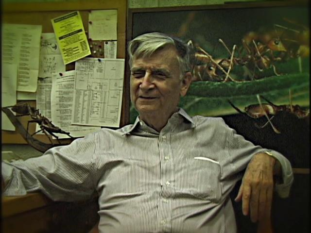 Excerpt: E.O. Wilson on the benefits of puke